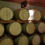 Фотография Zandvliet Wine Estate
