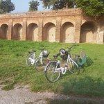 Ferrara - city walls