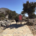 On a hike while at Crete Family Villas, my new friend