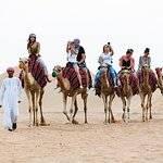 Dubai Desert 4x4 Safari with Quad Ride, Camel Ride, BBQ Dinner and Belly Dancing (360499692)