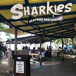 Foto de Sharkies Seafood Restaurant