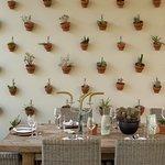 Table setting at cosecha restaurant.