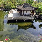 A pond in the Kowloon Walled City Park