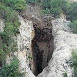 Φωτογραφία: Battambang Bat Caves