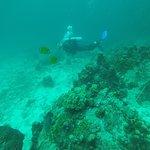 Foto van Sairee Cottage Diving