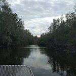 Down South Airboat Tours Photo