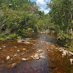 Foto de Byfield National Park