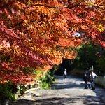 Photo of Shikoku Mura Village