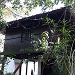 MEADOW  VIEW  INN  THEKKADY   TREE  HOUSE  CANTACT  NO  8606422302  NO  6235722424