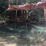 Photo de Parque el Cubano