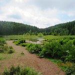 Foto de Lagoa do Canario