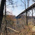 New River Gorge Bridge Picture