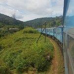Photo of Chandis SriLankan Tours