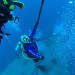 Billede af Rainbow Reef Dive Center