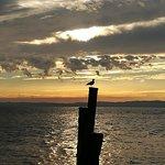 Punta di San Vigilio照片