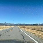 The grassland near Seirra Springs