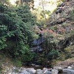 Bhalu Gaad Waterfalls-bild