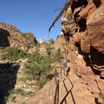 Photo of Canyon Overlook Trail