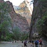 Foto de Temple of Sinawava Trail