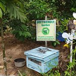 Photo of Phu Quoc Bee Farm Cafe