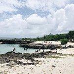صورة فوتوغرافية لـ Smith Cove