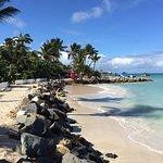 Foto de Coconut Grove Restaurant