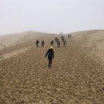 Photo de Dune of Pilat