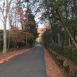 Landscape - Sengokuhara Shinanoki Ichinoyu Photo