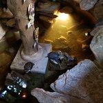 Foto de La Cueva del Chango