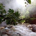 Fotografie: Jhony Jungle Trekking