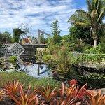 Foto de Naples Botanical Garden