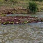 Arbaminch chamo lake