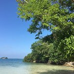 Great island!
