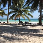 صورة فوتوغرافية لـ Coconut Beach