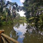 Sepilok Jungle Resort Photo