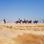 Horse riding tours in Egypt.