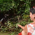 Foto de The Little Amazon