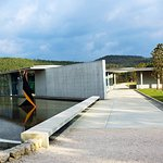 Tadao Ando arts centre and restaurant at Château La Coste