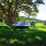 Tom Shannon sculptures nestles in the Provence countryside at Château La Coste