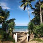 صورة فوتوغرافية لـ The Beach Restaurant