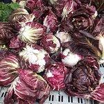 Foto de Union Square Green Market