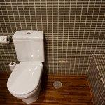 Dual flush efficient toilet