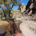 horseback riding in paradise!