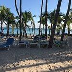 Nous sommes allés au Riu Palace Punta Cana du 24 novembre au 1er décembre. Magnifique endroit, pas besoin de se lever tôt pour mettre des serviettes sur les chaises à la plage. Première fois dans un riu, service excellent, nourriture excellente.  Top un pour les restaurants: steakhouse pour la langouste, l'espagnole pour la variatée. Je recommande cet hôtel. Petit complexe, pas un adulte seulement mais très bien.