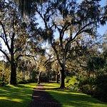 Bilde fra Bok Tower Gardens