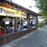 Photo of Peace Tree Juice Cafe