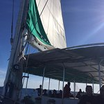 Bild från VMT Madeira - Catamaran Trips