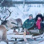 Enjoy reindeer sledding, an unforgettable experience