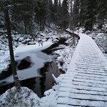 Pyha-Luosto National Parkの写真