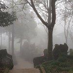 ภาพถ่ายของ Ham Rong Mountain